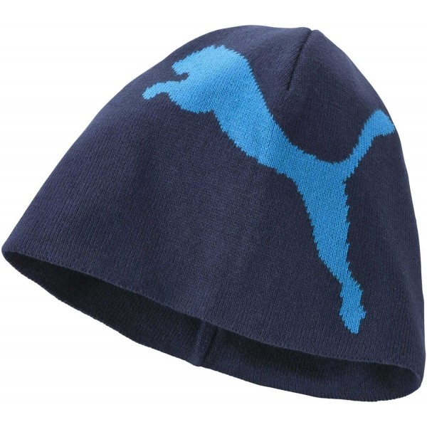 BIG CAT NO1LOGO BEANIE - Pánska zimná čiapka